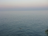 Calm Sea Horizon View - Public Domain Pictures