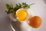 Egg Tomato Egg - Public Domain Pictures