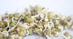 Sprouts Healthy Food - Public Domain Pictures