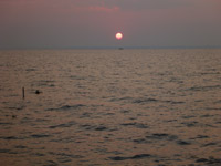 Sunset Sea Ocean - Public Domain Pictures
