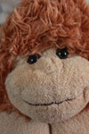 Monkey Soft Toy - Public Domain Pictures