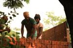 Labourers - Public Domain Pictures