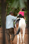 Child Horse Ride - Public Domain Pictures