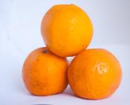 Three Oranges - Public Domain Pictures