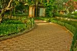 Pathway In Garden - Public Domain Pictures