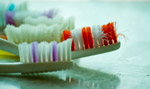 6359-colorful-toothbrushes - Public Domain Pictures