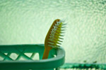 Toothbrush Stand - Public Domain Pictures