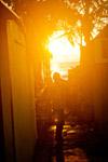 Man Standing Sun - Public Domain Pictures