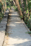 Garden Path Concrete - Public Domain Pictures