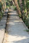 Garden Path Concrete - Public Domain Pictures