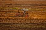 Tractor Tilling Farms - Public Domain Pictures