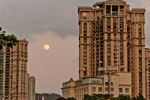 Concrete Jungle Moon - Public Domain Pictures