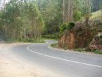 Curvy Road - Public Domain Pictures