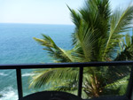 Balcony Sea View Palms - Public Domain Pictures