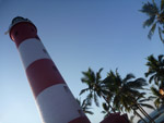 Lighthouse Palm Trees - Public Domain Pictures