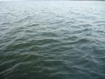 Sea Water Closeup - Public Domain Pictures