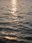 Sunset Sea Water Closeup - Public Domain Pictures