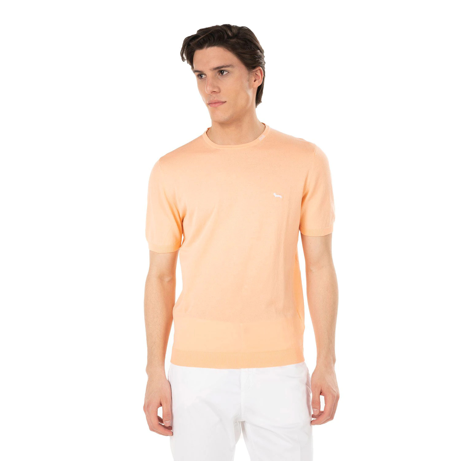 T-shirt in cotone Harmont and Blaine HARMONT & BLAINE   T-shirt   HRF239030728410