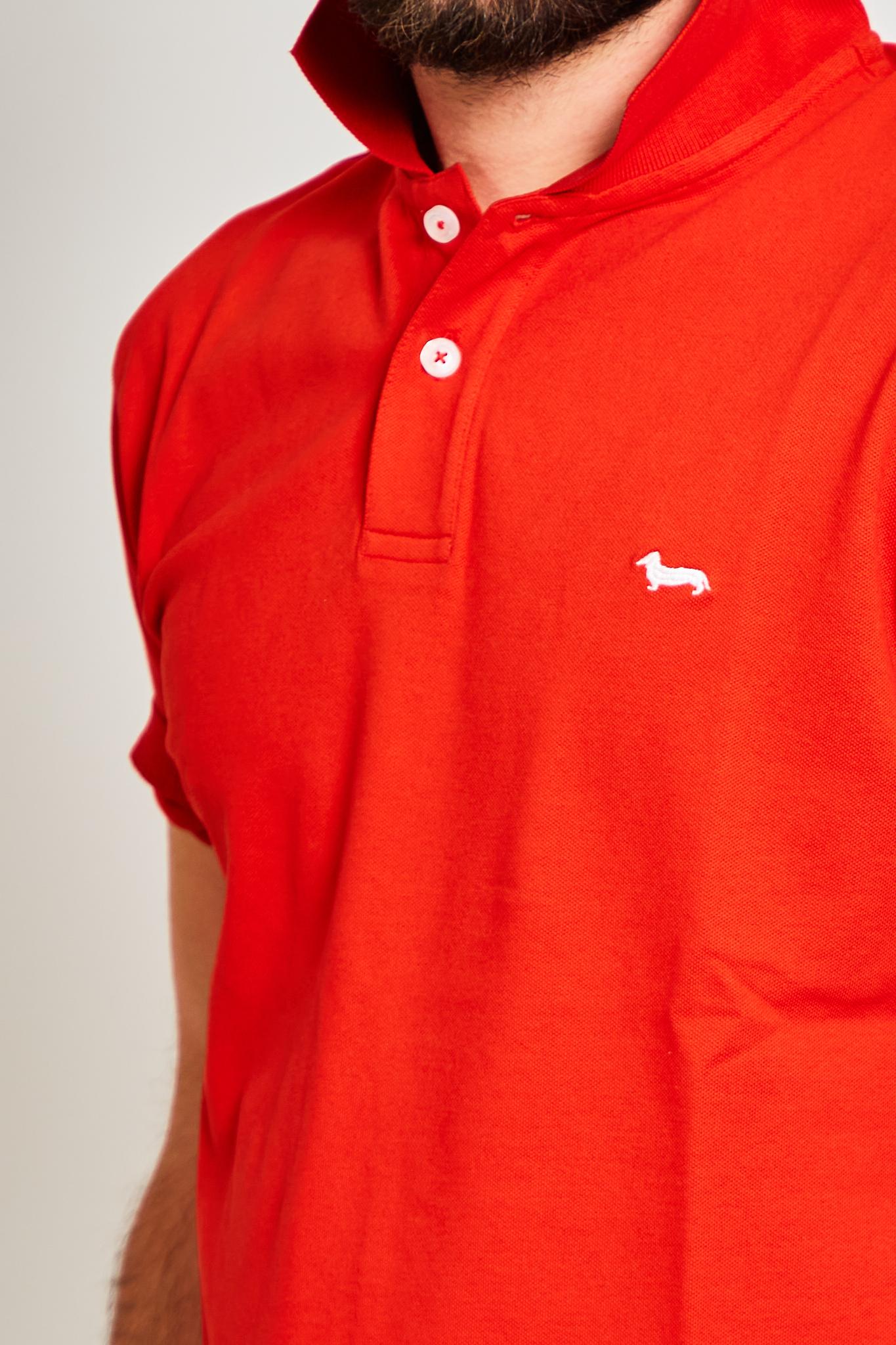 Polo Harmont and Blaine HARMONT & BLAINE   Polo   LRF033020862523