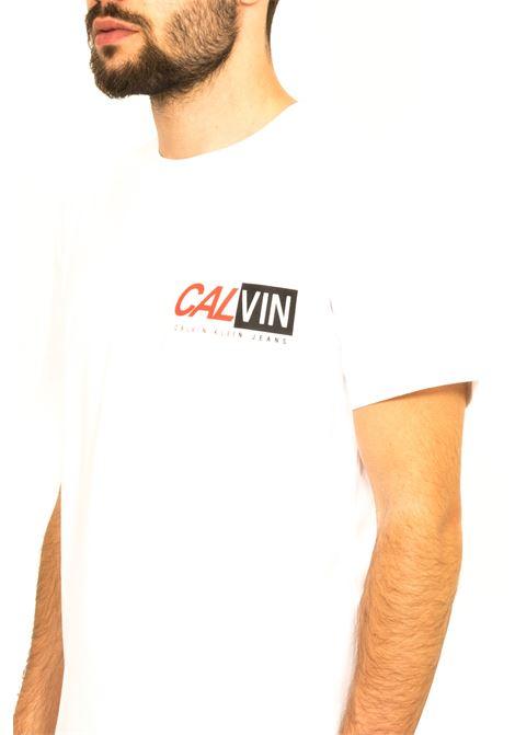 CALVIN KLEIN | T-shirt | J315007YAF