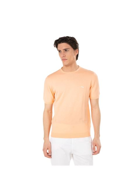 T-shirt in cotone Harmont and Blaine HARMONT & BLAINE | T-shirt | HRF239030728410