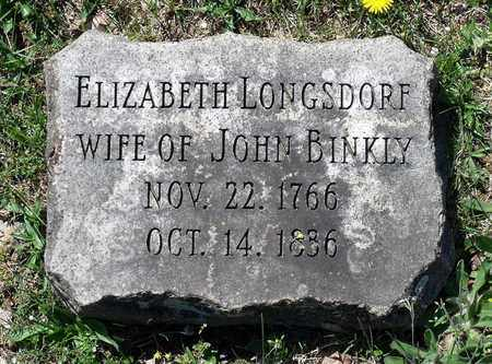 LONGSDORF BINKLY, ELIZABETH - Berks County, Pennsylvania | ELIZABETH LONGSDORF BINKLY - Pennsylvania Gravestone Photos