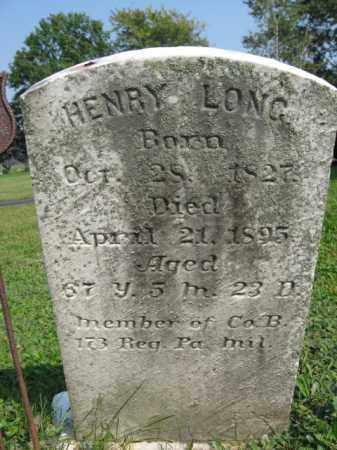 LONG, HENRY - Berks County, Pennsylvania | HENRY LONG - Pennsylvania Gravestone Photos