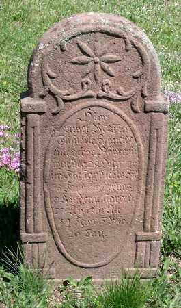 ROHRER SCHNEIDER, MARIA ELISABETH - Berks County, Pennsylvania | MARIA ELISABETH ROHRER SCHNEIDER - Pennsylvania Gravestone Photos