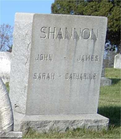 SHANNON, JOHN - Blair County, Pennsylvania | JOHN SHANNON - Pennsylvania Gravestone Photos