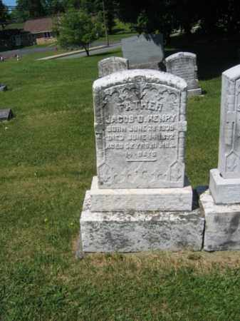 HENRY, JACOB D. - Bucks County, Pennsylvania | JACOB D. HENRY - Pennsylvania Gravestone Photos