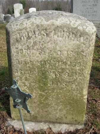 MURRAY, THOMAS - Bucks County, Pennsylvania   THOMAS MURRAY - Pennsylvania Gravestone Photos