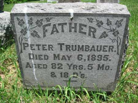 TRUMBAUER, PETER - Bucks County, Pennsylvania | PETER TRUMBAUER - Pennsylvania Gravestone Photos