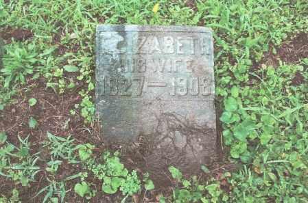 NACE, ELIZABETH - Dauphin County, Pennsylvania | ELIZABETH NACE - Pennsylvania Gravestone Photos