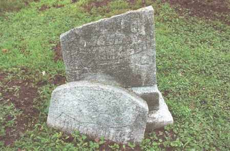 NACE, JOHN - Dauphin County, Pennsylvania | JOHN NACE - Pennsylvania Gravestone Photos