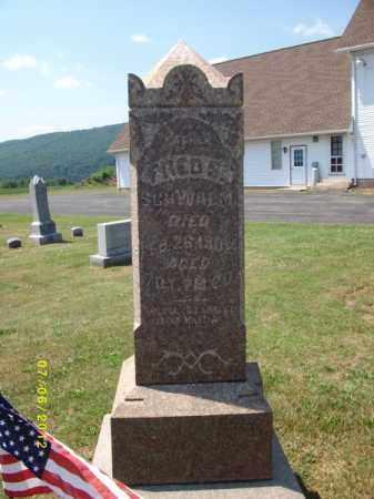SCHWALM, FREDERICK - Dauphin County, Pennsylvania   FREDERICK SCHWALM - Pennsylvania Gravestone Photos