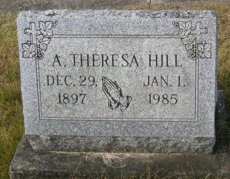 HILL, THERESA - Elk County, Pennsylvania | THERESA HILL - Pennsylvania Gravestone Photos