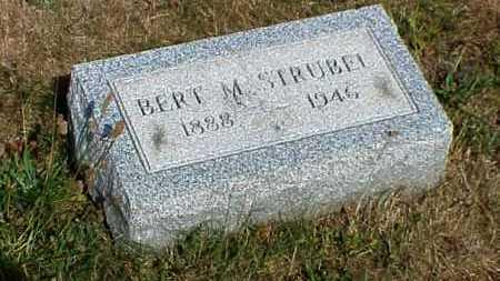 STRUBEL, BERT MATHIAS - Erie County, Pennsylvania   BERT MATHIAS STRUBEL - Pennsylvania Gravestone Photos