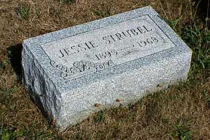 STRUBEL, JESSIE - Erie County, Pennsylvania | JESSIE STRUBEL - Pennsylvania Gravestone Photos