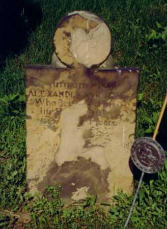 ALEXANDER, WILSON - Fayette County, Pennsylvania | WILSON ALEXANDER - Pennsylvania Gravestone Photos