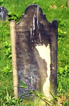 WILSON, DEBORAH - Fayette County, Pennsylvania | DEBORAH WILSON - Pennsylvania Gravestone Photos