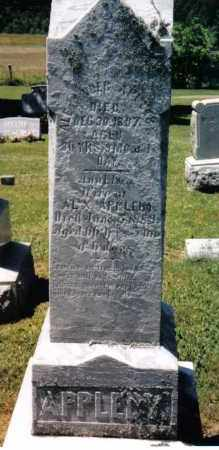 JEFFRIES APPLEBY, ANN ELIZA - Huntingdon County, Pennsylvania | ANN ELIZA JEFFRIES APPLEBY - Pennsylvania Gravestone Photos