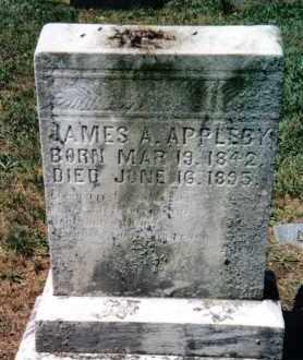 APPLEBY, EMILY C. - Huntingdon County, Pennsylvania | EMILY C. APPLEBY - Pennsylvania Gravestone Photos