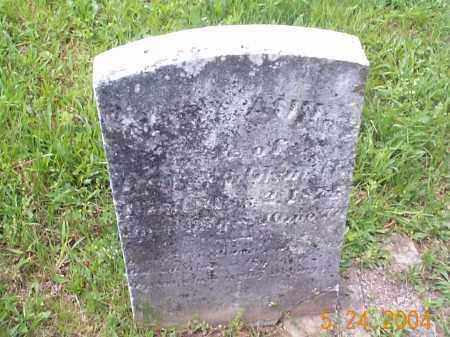 WALDSMITH, MARY ANN - Huntingdon County, Pennsylvania | MARY ANN WALDSMITH - Pennsylvania Gravestone Photos