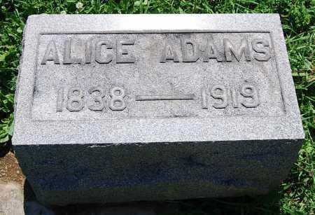 ADAMS, ALICE - Juniata County, Pennsylvania | ALICE ADAMS - Pennsylvania Gravestone Photos