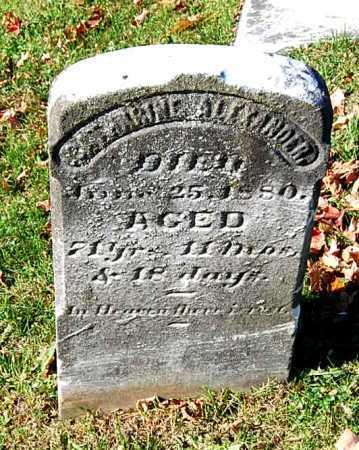 ALEXANDER, CATHARINE - Juniata County, Pennsylvania | CATHARINE ALEXANDER - Pennsylvania Gravestone Photos
