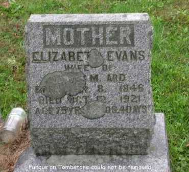 ARD, ELIZABETH - Juniata County, Pennsylvania   ELIZABETH ARD - Pennsylvania Gravestone Photos