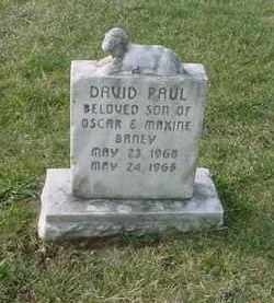 BANEY, DAVID PAUL - Juniata County, Pennsylvania | DAVID PAUL BANEY - Pennsylvania Gravestone Photos
