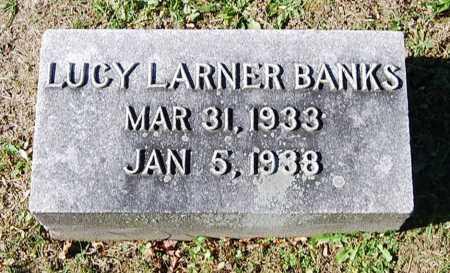 BANKS, LUCY LARNER - Juniata County, Pennsylvania | LUCY LARNER BANKS - Pennsylvania Gravestone Photos