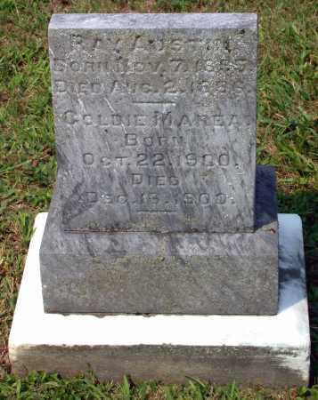 BASHORE, RAY AUSTIN - Juniata County, Pennsylvania   RAY AUSTIN BASHORE - Pennsylvania Gravestone Photos
