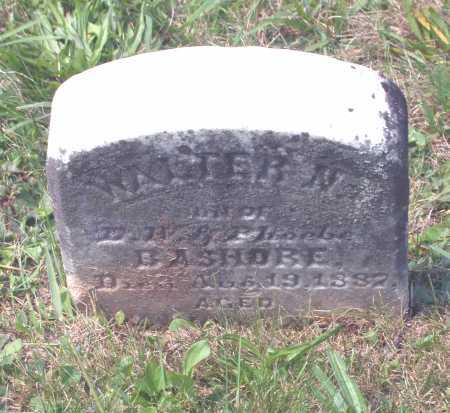 BASHORE, WALTER N. - Juniata County, Pennsylvania | WALTER N. BASHORE - Pennsylvania Gravestone Photos